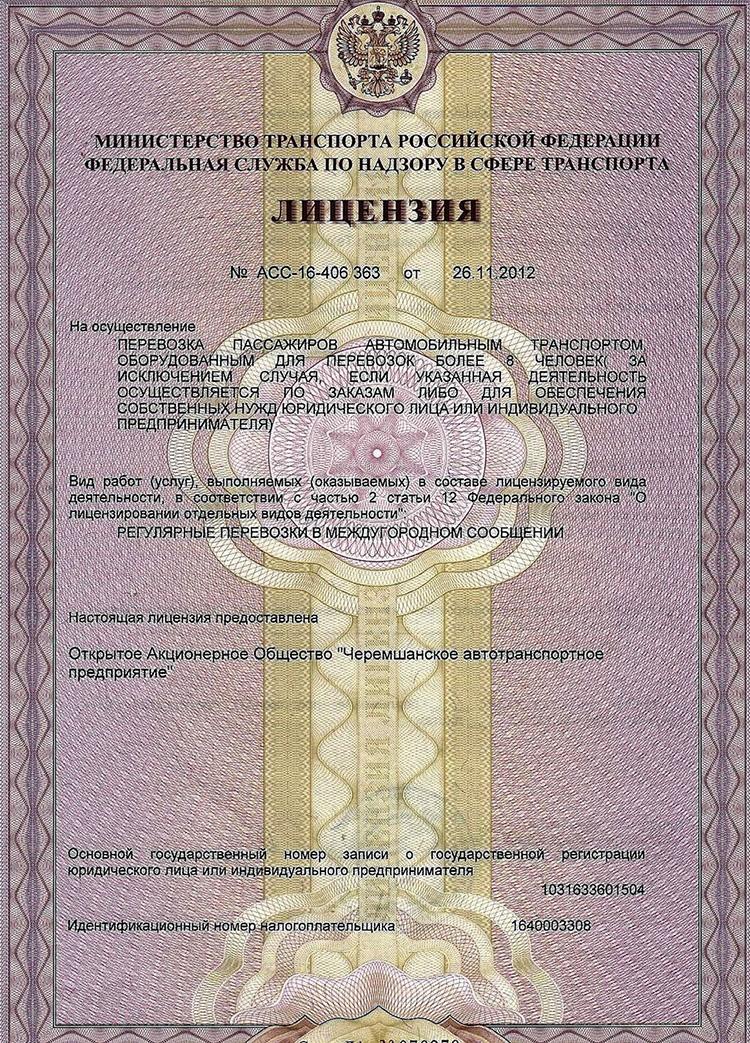 внешний вид лицензии